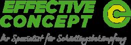 Effective Concept Logo